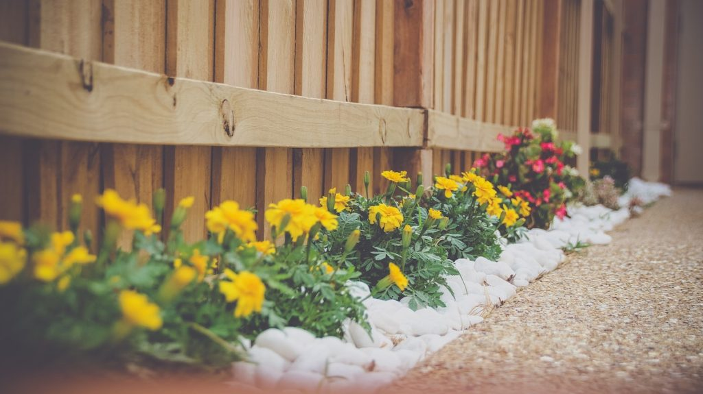 Landscaping DIY projects